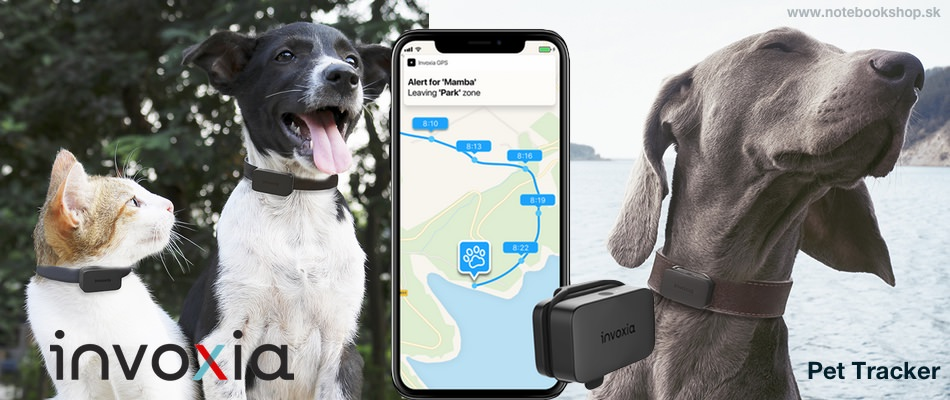 Invoxia Pet Tracker