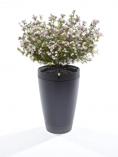 Obrázok produktu Parrot POT - inteligentný kvetináč
