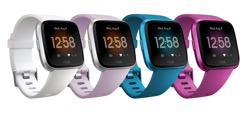 Fitbit Versa Watch Lite Edition